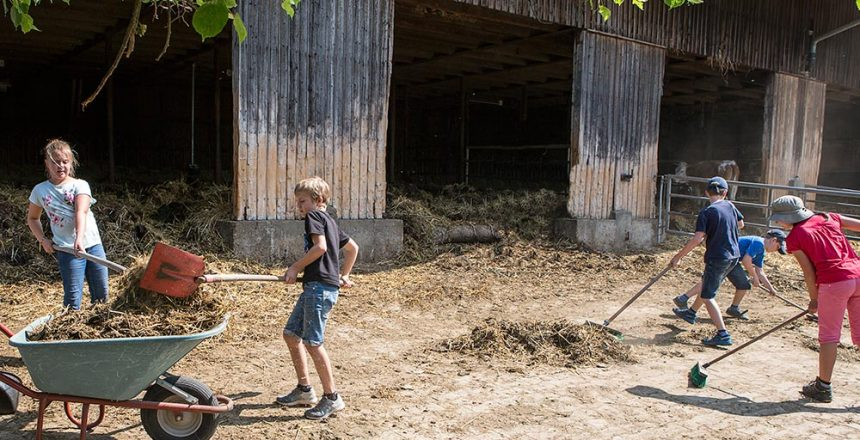 Dreimal Bauernhof